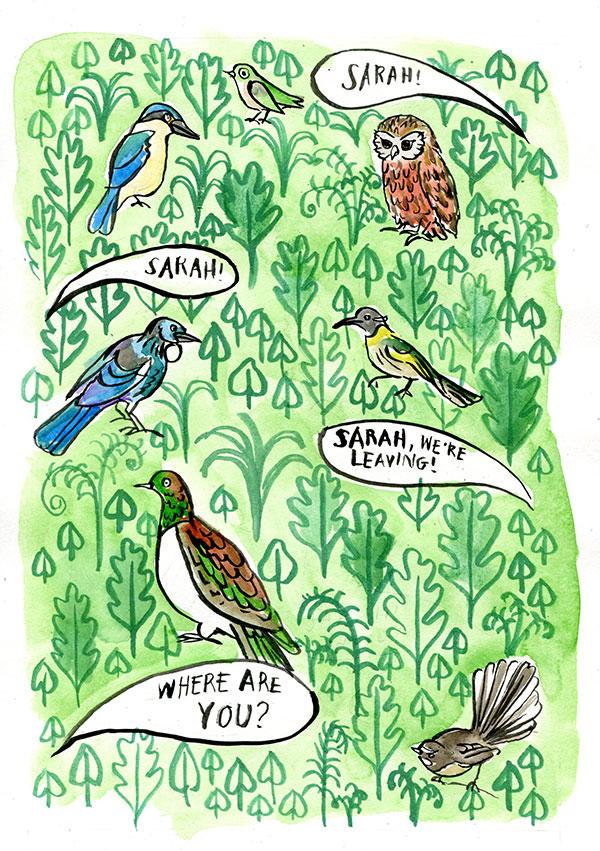 bushbirds001